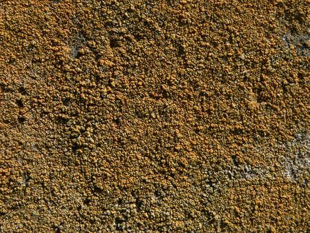 Serie van de texturen (De muur) Stockfoto