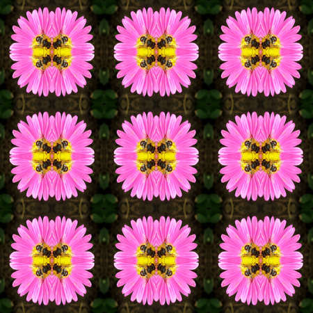 Series of the seamless natural patterns (bees on flower) Stock Photo - 2853818