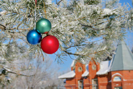 pine three: Three colour balls on a pine branch and little red house Stock Photo