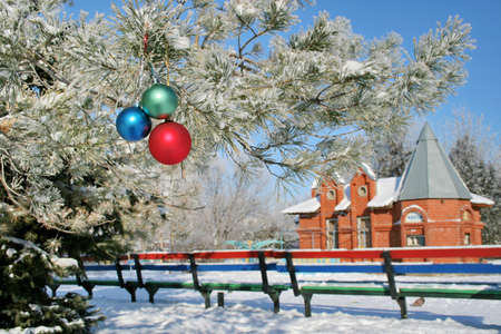 Bench and the small house in Winter park. Spheres on a branch. photo