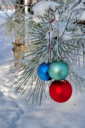 Christmas-tree decorations. Three Balls on pines branch (vertical orientation) photo