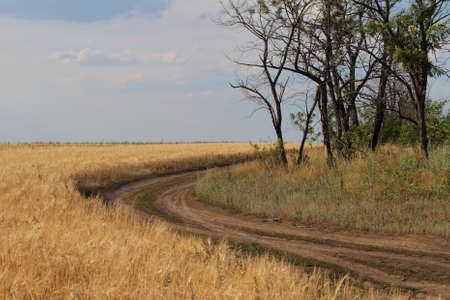 sloping: A road along the sloping field