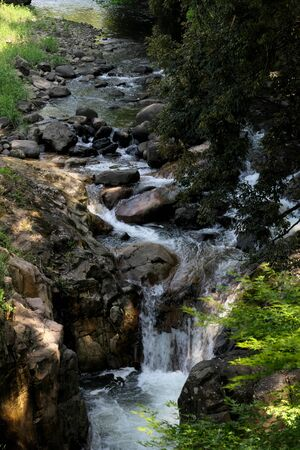 A mountain stream and a small waterfall in the forest
