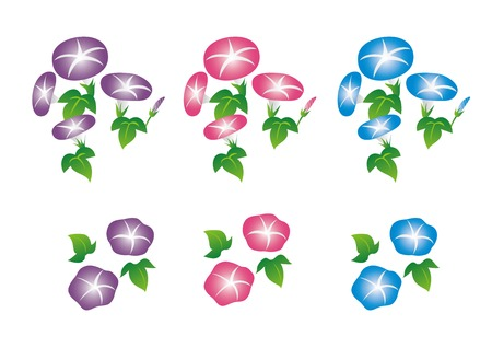 Morning glory illustration set (pink, blue, violet) 일러스트