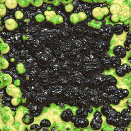 Green and black bacteria
