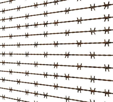 barbed wire and fence: Barbed wire fence