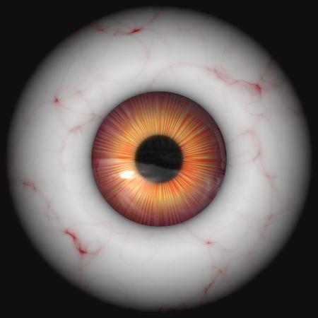 globo ocular: Closeup del globo ocular