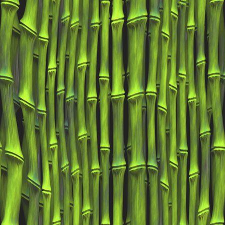 Dense jungle vegetation