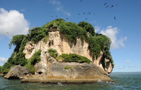 Uninhabited island in the Haitises park in the Caribbean 版權商用圖片