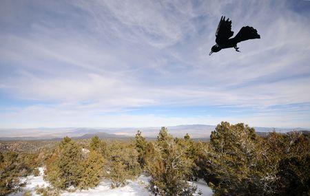 southwest usa: Mountain landscape in Nevada, Southwest USA