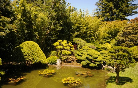 maintained: Idyllic scene from beautifully maintained Japanese garden Stock Photo