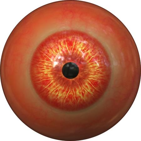 bloodshot: Bloodshot red eyeball isolated on white background