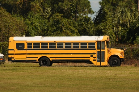 Yellow school bus parked on green grass Stock Photo