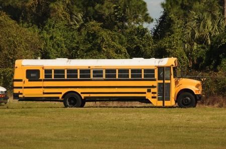 school bus: Yellow school bus parked on green grass Stock Photo
