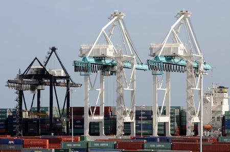 マイアミ、アメリカ合衆国 - 2008 年 7 月 18 日: 巨大なクレーンはマイアミ港にコンテナーを移動します。取扱施設、世界で最大のコンテナーの 1 つで
