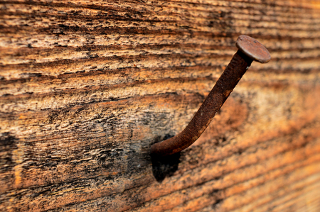 rusty nail: rusty nail driven into the board