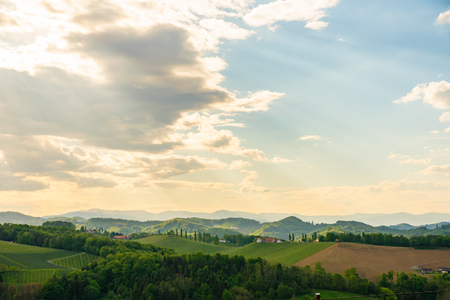 South styria vineyards landscape, near Gamlitz, Austria, Eckberg, Europe. Grape hills view from wine road in spring. Tourist destination, travel spot.