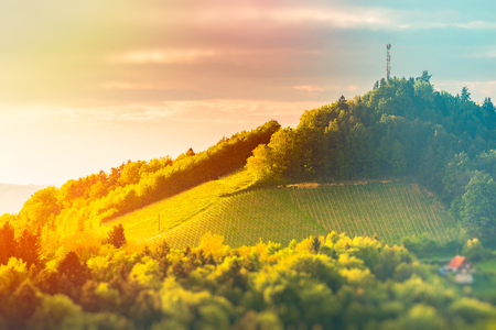 Austria Vineyards Sulztal Leibnitz area south Styria, wine country. Sunny landscape of famous tourist destination. Vivid, edited version of image