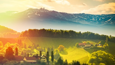 Austria Vineyards Sulztal Leibnitz area south Styria, wine country. Sunny landscape of famous tourist destination. Edited Version of image Stock fotó