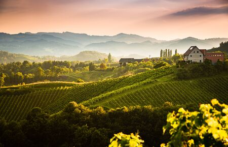 View from famous wine street in south styria, Austria on tuscany like vineyard hills. Tourist destination Stock Photo