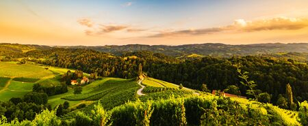 Famous heart shaped street at vineyards in Slovenia close to the border with Austria south styria. tourist destination