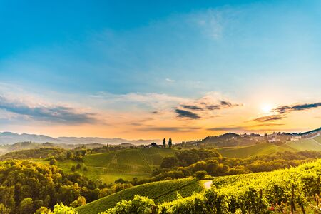 View from famous wine street in south styria, Austria on tuscany like vineyard hills. Tourist destination 免版税图像