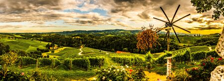 Panorama view of Slovenian Vineyards in summer in south Styria, Austria tourist spot, travel destination. Famous heart shaped road