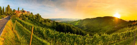 Landscape panorama of vineyard on an Austrian countryside with a church in the background in Kitzeck im Sausal Stock fotó