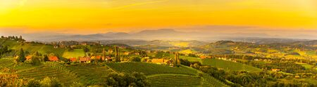 Landscape panorama of vineyard on an Austrian countryside with Graz in background in Leibnitz Kitzeck im Sausal