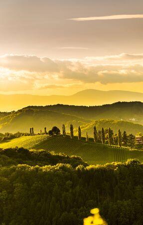 South styria vineyards landscape, near Gamlitz, Austria, Eckberg, Europe. Grape hills view from wine road in spring. Tourist destination, vertical photo Reklamní fotografie