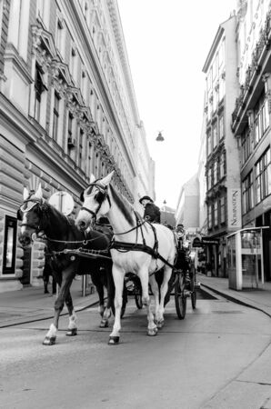 Horse drawn carriage tour on street of old city Vienna in Austria. Tourist spot.