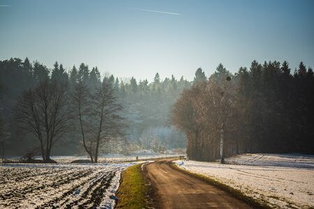 Rural landscape. Road through fields leading to forest in winter. Hazy frosty day background Фото со стока