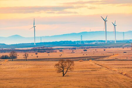 Wind turbines on the field in rural area. Ecology concept Stock Photo