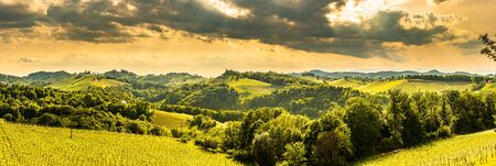 South styria vineyards panorama landscape, place near Gamlitz, Austria, Eckberg, Europe. Grape hills view from wine road in spring. Tourist destination, travel spot. Stock Photo