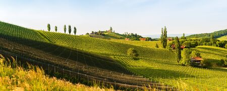 Austria Vineyards Sulztal weinstrasse south Styria tourist spot, wine country places to see