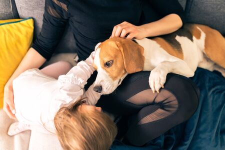 Young mother with 2 years old daughter on a sofa in bright room pet the beagle dog. Pets with family concept