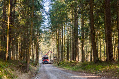 Kaiserwald, Austria - 21.01.2020: Crane in forest loading logs in the truck. Timber harvesting and transportation in forest. Transport of forest logging industry and forestry industry.
