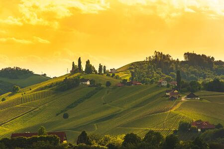 A Beautiful Sunset over south styria vineyards. Famous place for their white wine. Vineyard themed background