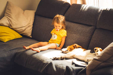 Baby with dog on sofa in bright room. Dog with child theme