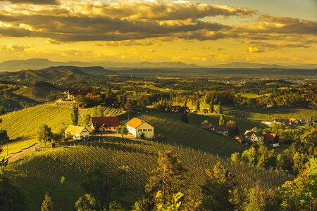 Sunset over South Styria vineyard landscape in Steiermark, Austria. Beautiful tranquil destination to visit for famous white wine. Tra
