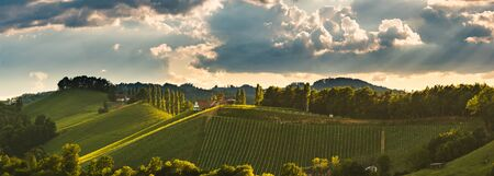 Vineyards panorama Leibnitz area famous destination wine street area south Styria on border with Slovenia. Wine country in summer. Tourist destination. Green hills and crops