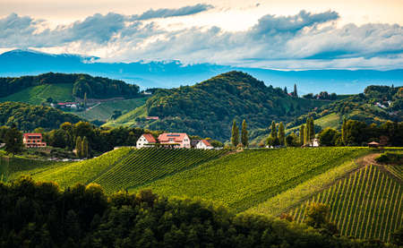 Styrian Tuscany Vineyard in autumn near Eckberg, Gamliz, Styria, Austria. Tourist spot for wine lovers.