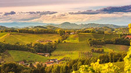 South styria vineyards landscape, near Gamlitz, Austria, Eckberg, Europe. Grape hills view from wine road in autumn