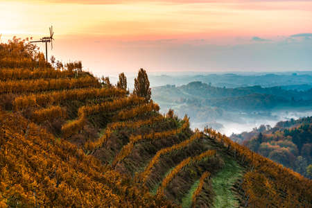 Autumn View from South Styrian route in Austria at hills in Slovenia during sunraise. Autumn at Vineyard theme.