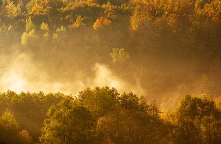 Lake fog landscape with Autumn foliage and tree reflections in Styria, Thal, Austria. Autumn season theme.