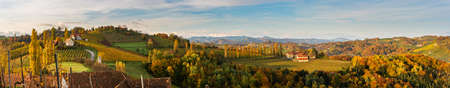 South styria vineyards panorama, Tuscany of Austria. Sunrise in autumn. Colorful trees and vieyard at top of hill with poplar trees
