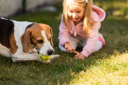 Child playing with dog on grass.