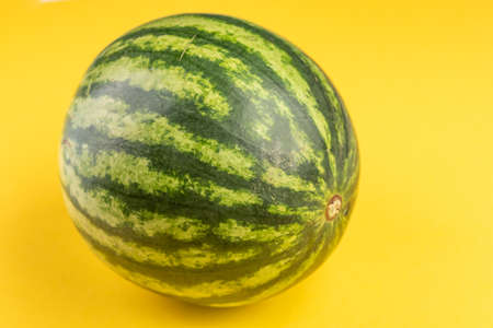 Green watermelon on yellow background side view