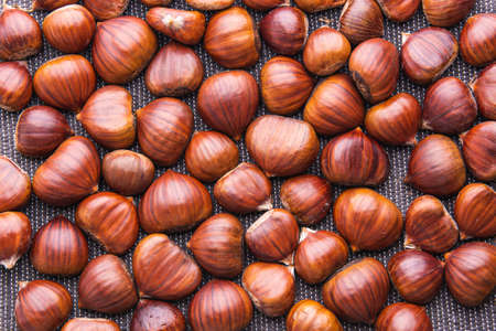 Ripe chestnuts close up. Raw Chestnuts for Christmas. Fresh sweet chestnut.