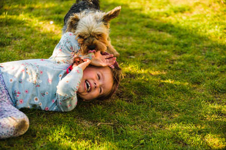 Baby girl lying on grass with dog in backyard on summer day. Stock Photo